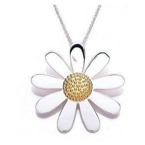 Silver and gold plated 40mm pendant and chain